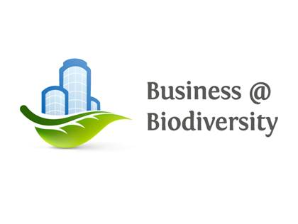 Picture of Innovation for Biodiversity and Business